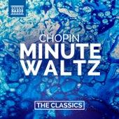 Chopin: Minute Waltz von İdil Biret