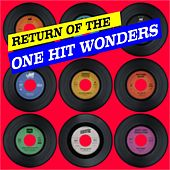 Return Of The One Hit Wonders von Various Artists