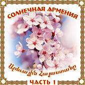 Солнечная Армения 1 de Various Artists
