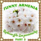 Sunny Armenia 3 de Various Artists