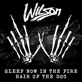 Sleep Now In The Fire / Hair Of The Dog by Wilson
