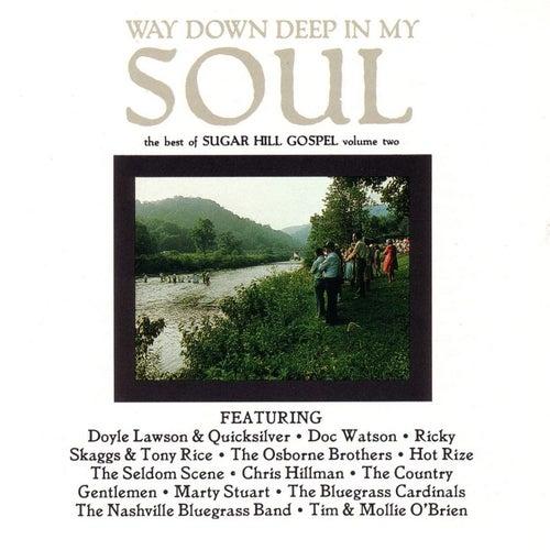 Way Down In My Soul: Best Of Sugar Hill Gospel Volume 2 by Various Artists