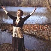 The Bigger Picture de Sabine