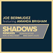 Shadows de Joe Bermudez