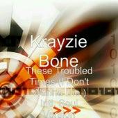 These Troubled Times  (I Don't Wanna Die) [Intl. Soul Version] [feat. Ne-Yo & Ahmed Soultan] - Single by Krayzie Bone