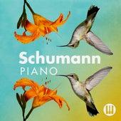 Schumann Piano de Various Artists