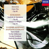 Brahms: Horn Trio / Schumann: Andante & Variations; Adagio & Allegro de Various Artists