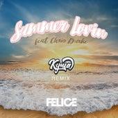 Summer Lovin (Kyma Remix) [feat. Chris Burke] de Felice