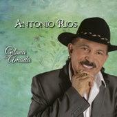 Gitana Amada de Antonio Rios