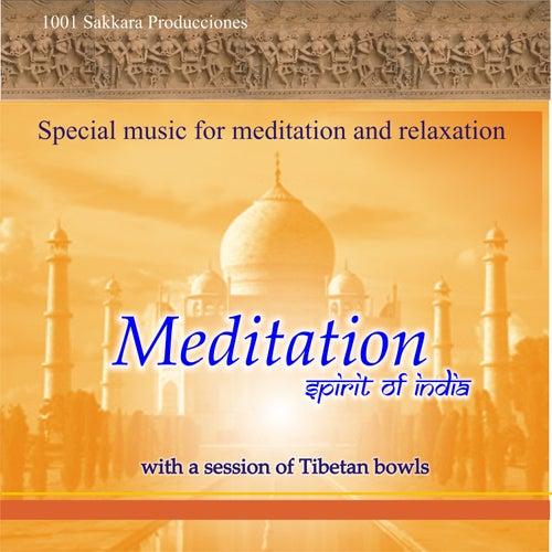 Meditation Spirit of India by John Martin
