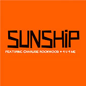 4U 4 Me van Sunship