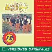 12 Éxitos Instrumentales von Los Angeles Azules