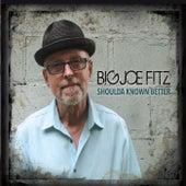 Shoulda Known Better von Big Joe Fitz