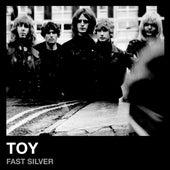 Fast Silver von Toy