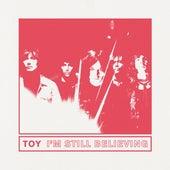 I'm Still Believing von Toy