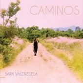 Caminos de Sara Valenzuela