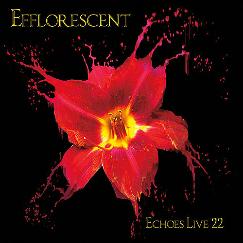 Efflorescent: Echoes Live 22 by Various Artists