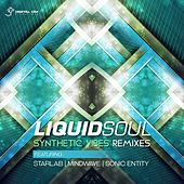 Synthetic Vibes Remixes by Liquid Soul