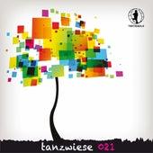 Tanzwiese 021 de Various Artists