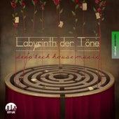 Labyrinth der Töne, Vol. 17 - Deep & Tech-House Music by Various Artists