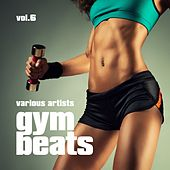Gym Beats, Vol. 6 by Various Artists