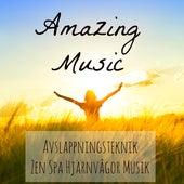 Amazing Music - Avslappningsteknik Zen Spa Hjärnvågor Musik för Chakra Terapi Helande Massage Sömncykel med Instrumental Romantisk Piano Lugnande Ljud by Various Artists