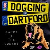 Dogging In Dartford by The Gonads