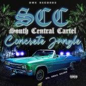 Concrete Jungle by South Central Cartel