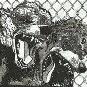Night Bully by Urochromes