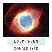 Look Down by Donald Byrd