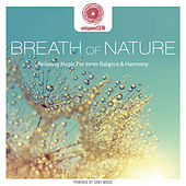 entspanntSEIN - Breath of Nature (Relaxing Music for Inner Balance & Harmony) de Davy Jones