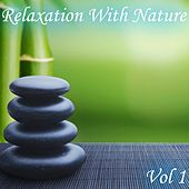 Relaxation With Nature, Vol. 1 van Various