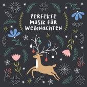 Perfekte Musik für Weihnachten by Various Artists