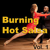 Burning Hot Salsa, Vol. 1 by Various Artists