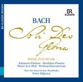 J.S. Bach: Wege zur Musik von Various Artists