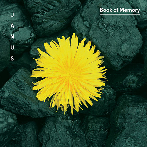 Book of Memory by Janus