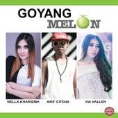 Goyang Melon by Various Artists