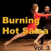 Burning Hot Salsa, Vol. 3 de Various Artists