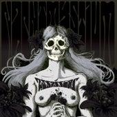 Assassins: Black Meddle, Pt. 1 by Nachtmystium