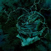 Instinct: Decay by Nachtmystium