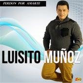 Perdón por Amarte von Luisito Muñoz