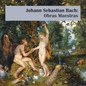 Johann Sebastian Bach: Obras Maestras by Various Artists