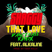 That Love (Dancehall Remix) de Shaggy
