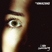 Little Something by The Amazons