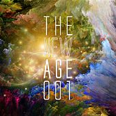 The New Age, Vol. 1 by Various Artists