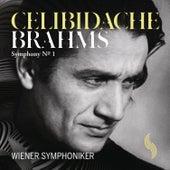 Brahms: Symphony No. 1 von Sergiu Celibidache