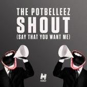 Shout (Say That You Want Me) von The Potbelleez