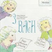 3 Bach: Johann Sebastian Bach, Carl Philipp Emanuel Bach, Johann Christian Bach by Various Artists