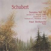 Schubert: Sonatas, Vol. VII by Paul Berkowitz