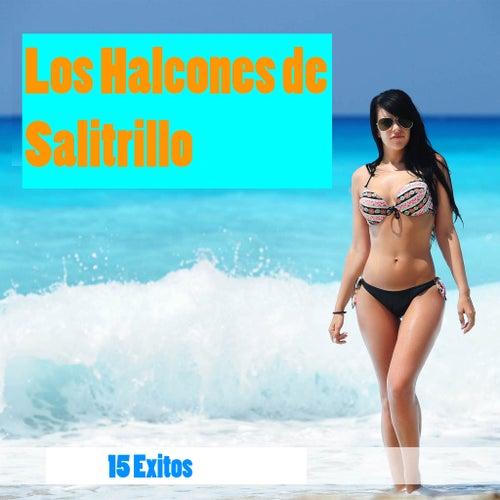 15 Exitos by Los Halcones De Salitrillo